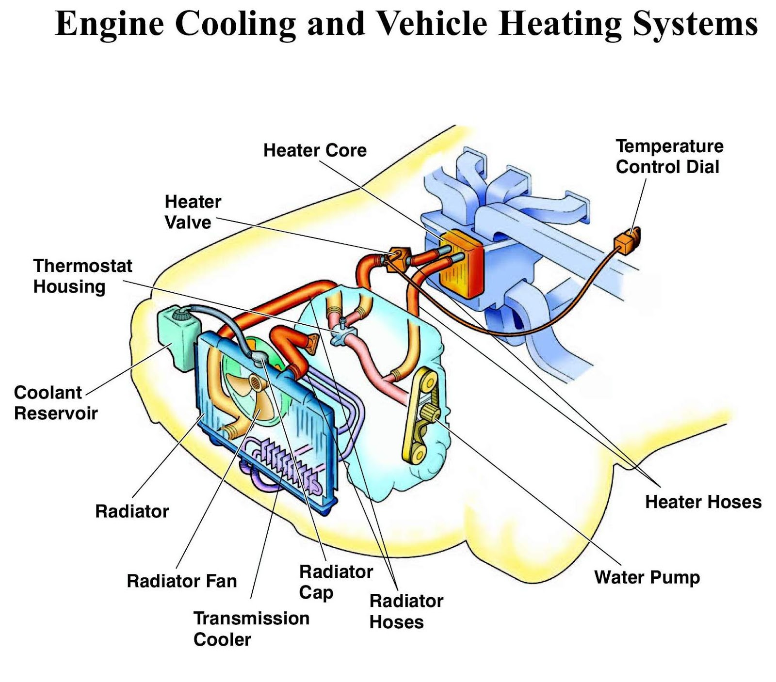 parts and functions of a manual car