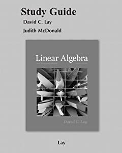 linear algebra and its applications david c lay solutions manual